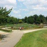 Révision au Parc Floral de Vincennes! parc-floral6-150x150